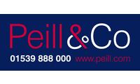Peill rectangular rgb 01539 888000