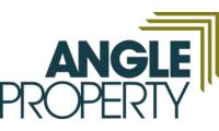 Angle header logo 2x