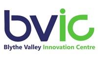 New clean bvic logo